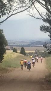 Tour de Bois - Narromine to Wellington