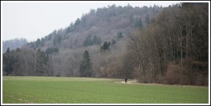 Day 60 Dogern -  Blumberg, Germany - 082