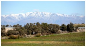 Near Talavera