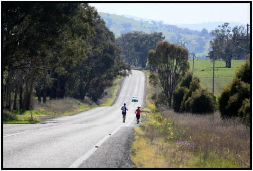 14km South of Cootamundra - 10km South of Harden, NSW - 04