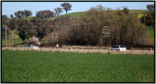 14km South of Cootamundra - 10km South of Harden, NSW - 27