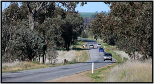 Wagga - Harefield, NSW - 09