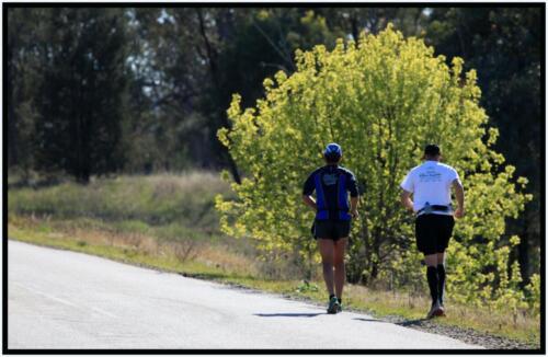 Wagga - Harefield, NSW - 16